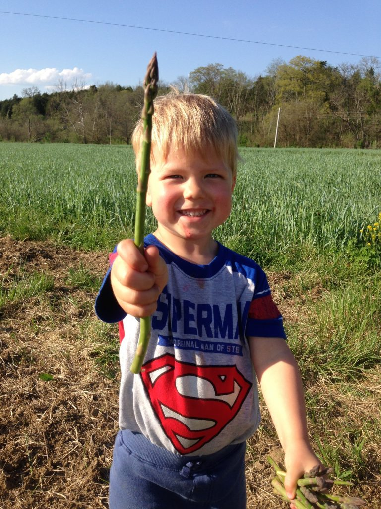 Jack was a newborn when we planted our field of asparagus, and look at him now!